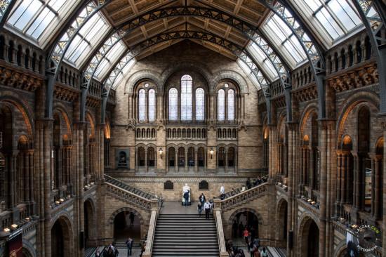 Hol #1 - Natural History Museum