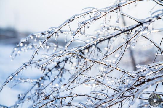 Lód - Zima 2013, Fotografia Rzeszów