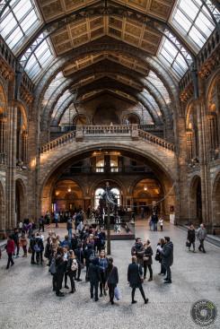 Ludzie - Natural History Museum